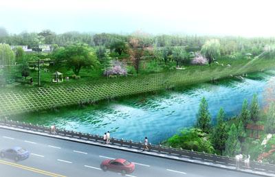 大设计院河道整治初步设计图纸